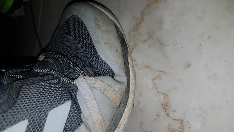 Tuotetta adidas - Terrex Skychaser LT GTX - Multisport-kengät koskeva kuva 2 käyttäjältä Jan