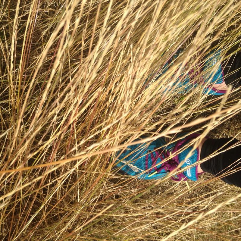 Tuotetta Brooks - Women's Puregrit 3 - Polkujuoksukengät koskeva kuva 1 käyttäjältä Hayley