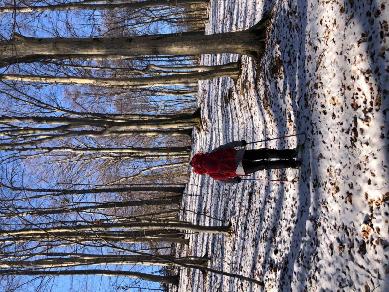 Tuotetta Gregory - Kid's Wander 50 - Trekkingreppu koskeva kuva 1 käyttäjältä Tamara