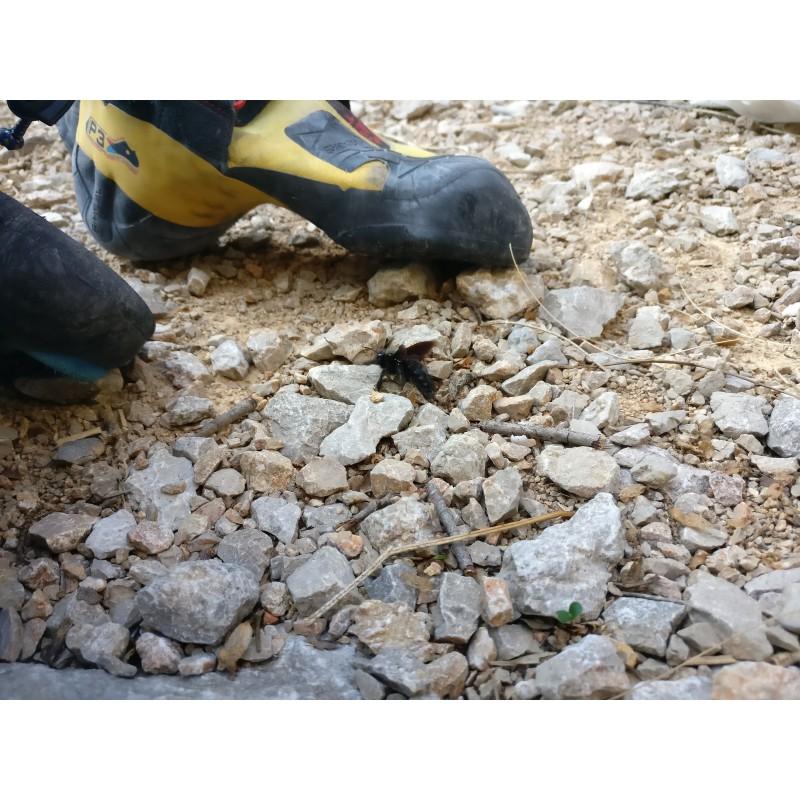 Tuotetta La Sportiva - Skwama - Kiipeilykengät koskeva kuva 1 käyttäjältä Patrick